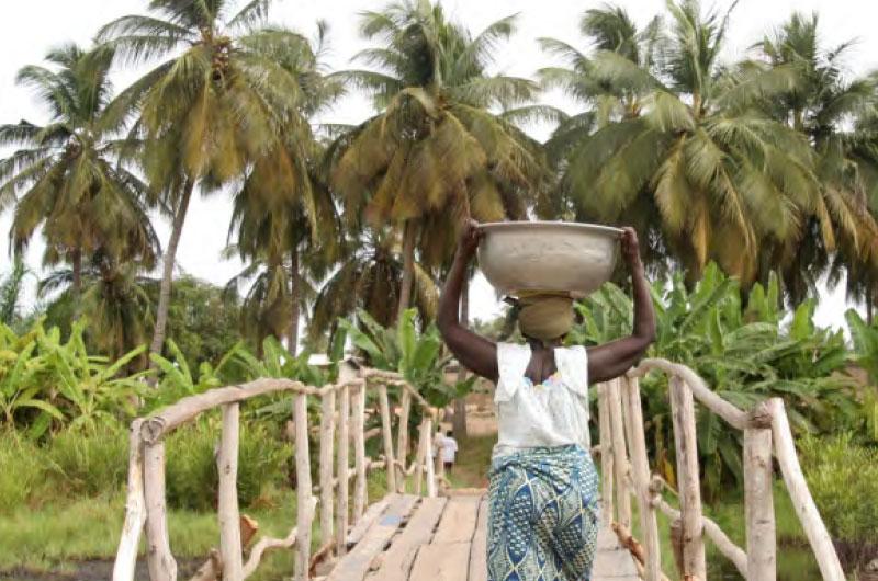 Country Focus – Mozambique