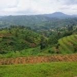 Rwanda Green Village Courtesy image
