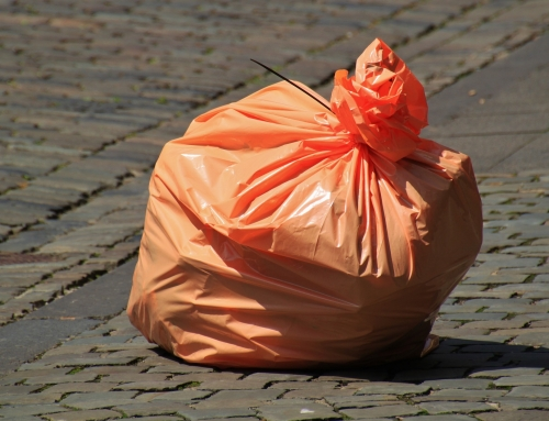 Chile bans plastic bags use